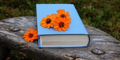 promouvoir un livre